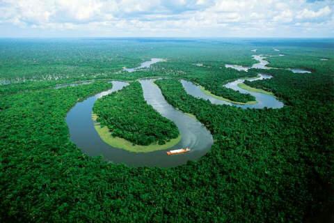 La foresta Amazzonica è una risorsa fondamentale per ripulire l'aria dai gas serra e diminuire l'impatto del surriscaldamento globale